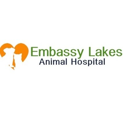 Embassy Lakes Animal Hospital inCooper City, FL Animal Hospitals