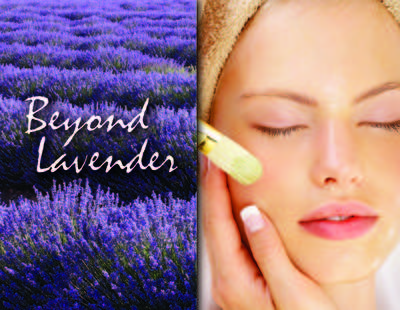 Beyond Lavender at Salons of Volterra inFort Worth, TX Beauty Salons