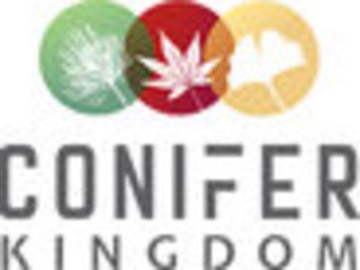 Conifer Kingdom in Silverton, OR Nurseries & Garden Centers