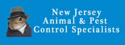 Affordable Bed Bug Removal Specialists in North Broadway - Newark, NJ Pest Control Services