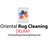 Oriental Rug Cleaning Service Delray Pros in Delray Beach, FL 33411 Carpet Cleaning & Repairing