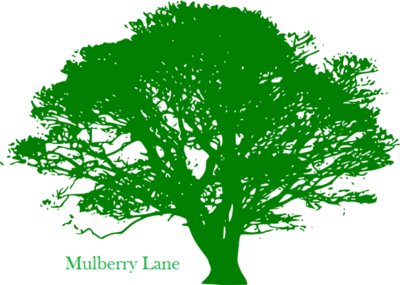 Mulberry Lane Advisors in Matawan, NJ Finance