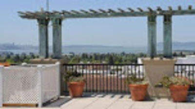 Berkeley Apartments - Fine Arts in Berkeley, CA 94704