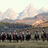 Goosewing Ranch in Kelly, WY 83011 Business Planning & Consulting