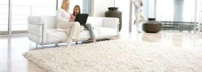 Redheart Carpet Cleaning in Santa Paula, CA 93060