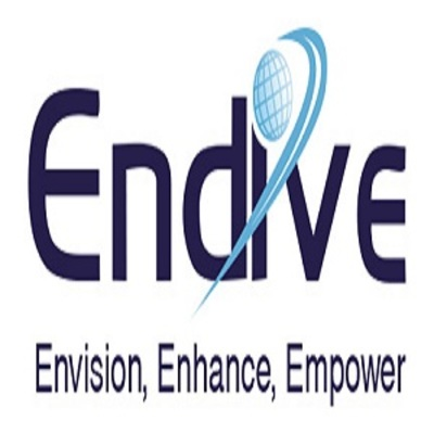 Endive Software Pvt Ltd in Minden, NV Software Development