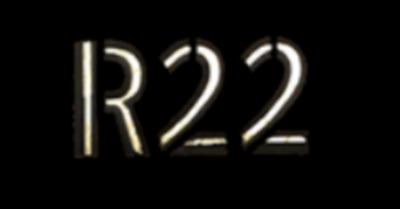 Rescue 22 Foundation in Bradenton, FL 34211 Pet Training & Obedience
