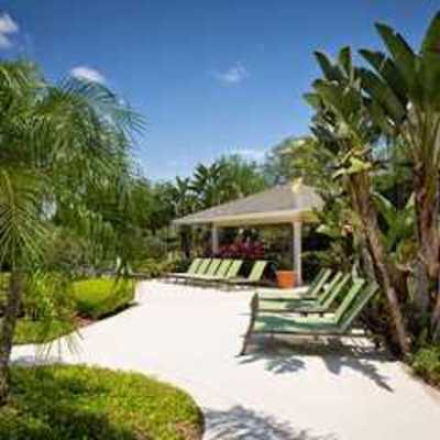 Arbor Walk Apartments in Tampa, FL 33617 Apartments & Buildings