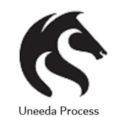 Uneeda Process in Palm Beach Gardens, FL Process Serving Services