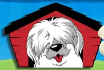 Shaggy Shack Pet Resort & Spa in Spanaway, WA Pet Grooming & Boarding