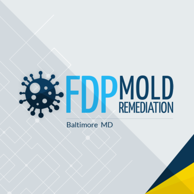 FDP Mold Remediation in Pimlico - Baltimore, MD Restoration Contractors