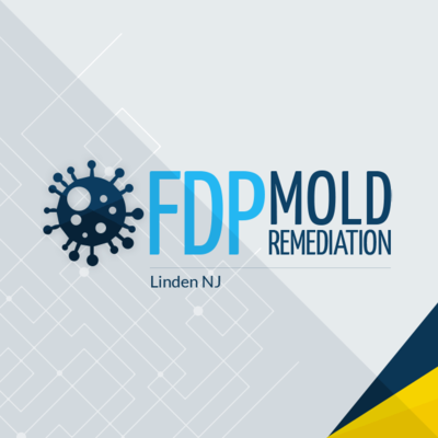 FDP Mold Remediation in Linden, NJ Green - Mold & Mildew Services