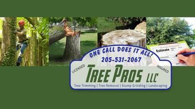 Tree Pros LLC in Remlap, AL Stump & Tree Removal