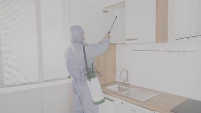 Pest Control Kendall Squad in Miami, FL 33176 Pest Control Services