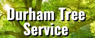 Durham Tree Service in Durham, NC 27703 Tree Service Equipment