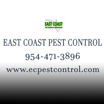 East Coast Pest Control in Downtown - Fort Lauderdale, FL 33301 Insecticides & Pest Control
