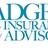 Badger Insurance Advisors in Denver, CO 80209 Auto Insurance