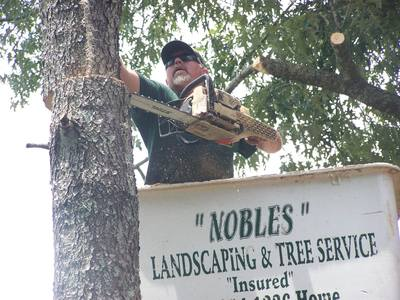 Nobles Landscaping & Tree Service LLC in Americus, GA 31719 Landscaping