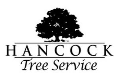 Hancock Tree Service in Knoxville, TN 37923 Tree Service