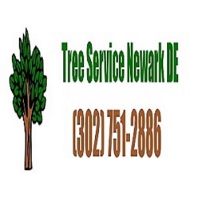 Newark DE Tree Service in Newark, DE 19711 Tree Service Equipment