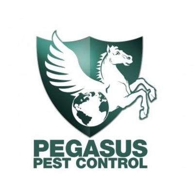 Pegasus Pest Control in Lincoln, CA 95648 Pest Control Services