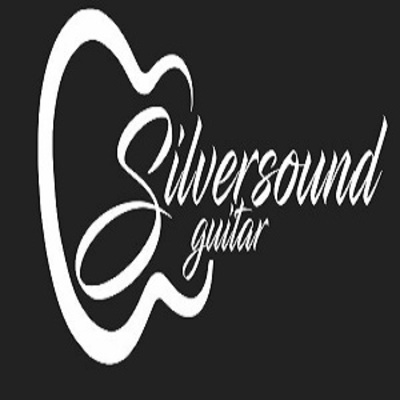Silversound Guitar in Northeast Colorado Springs - Colorado Springs, CO 80918 Music