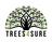 Trees 4 Sure Inc. in Santa Rosa Beach, FL 32549 Tree & Shrub Transplanting & Removal
