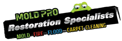 Mold Pro Water Damage Removal Queens in Flushing, NY Fire & Water Damage Restoration