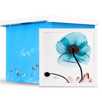 Cyan Lotus Hidden Shelf in Washington, DC 20036 Home Decor Accessories & Supplies