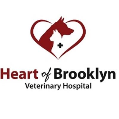 Heart of Brooklyn Veterinary Hospital in Brooklyn, NY 11226 Veterinarians