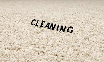 The Pittsburgh Carpet Cleaning Service Professionals in Shadyside - Pittsburgh, PA 15232 Carpet Cleaning & Repairing