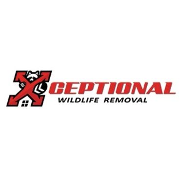 Xceptional Wildlife Removal in Regency - Jacksonville, FL 32211 Pest Control Services