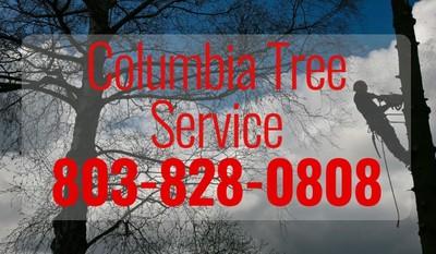 Columbia Tree Service in Columbia, SC 29201 Tree Service