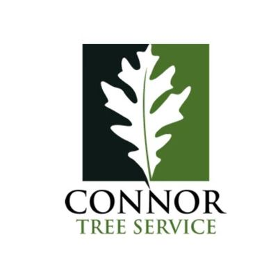 Connor Tree Service in Charleston, SC 29466 Tree Service