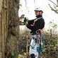 Tree Service Equipment Stamford, CT 06901