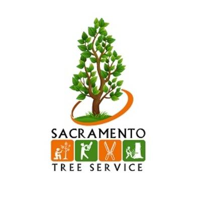 Sacramento Tree Service in East Sacramento - Sacramento, CA 95816 Tree Service