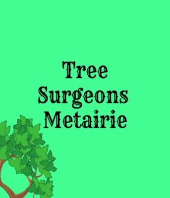 Tree Surgeons of Metairie in Metairie, LA Tree Service
