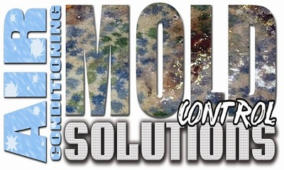 Mold Control Solutions in Jacksonville, FL 32207 Commercial Building Construction Contractor