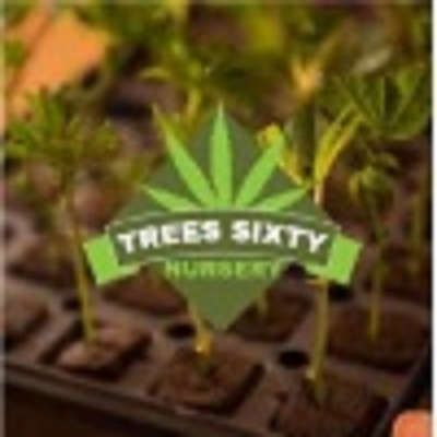 Trees Sixty Nursery in Los Angeles, CA 90015 Health & Beauty Aids