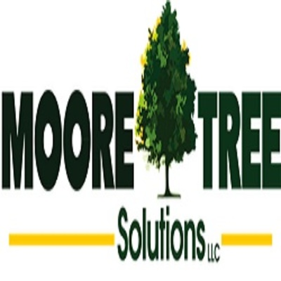 Moore Tree solutions in Athens, GA 30606 Tree Service