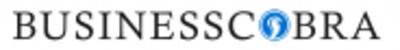 BusinessCobra in Tampa, FL 33602 Business Management Consultants