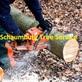 Lawn & Tree Service Schaumburg, IL 60193