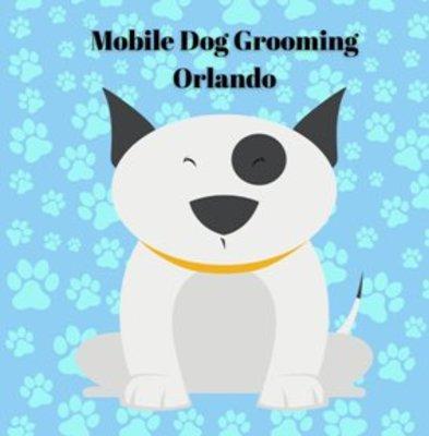 Mobile Dog Grooming Orlando in Orlando, FL 32808 Dogs
