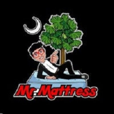 Mr. Mattress in Columbia, SC 29210 Mattress Manufacturing