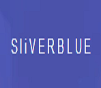 SLIVER BLUE ONLINE MARKETING AGENCY in los Angeles, CA 90017 Internet Marketing Services