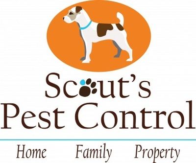Scout's Pest Control in Greenville, SC 29605 Exterminating and Pest Control Services