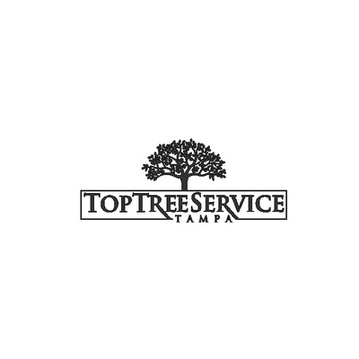 Top Tree Service Tampa in Tampa, FL 33615 Lawn & Tree Service