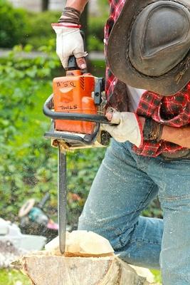 Tahir Tree Service in California in Ramona - Riverside, CA 92504 Roofing & Siding Materials