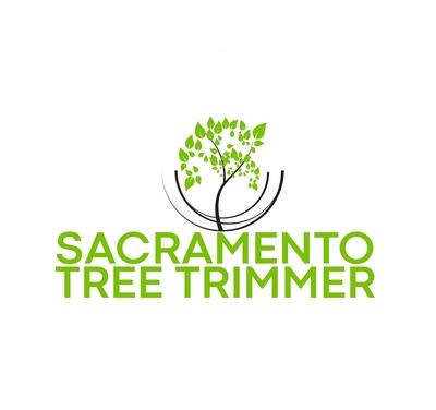 Sacramento Tree Trimmer in East Sacramento - Sacramento, CA 95816 Lawn & Tree Service