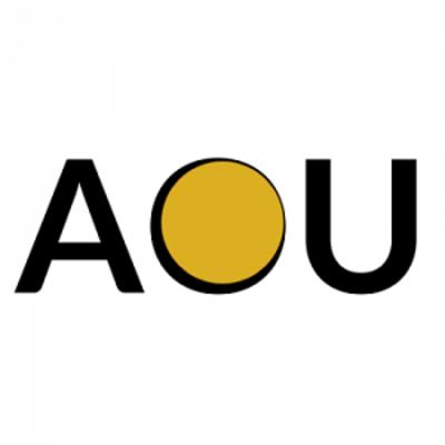 AOU Creative Group in Highlands Ranch, CO 80126 Web Site Design & Development